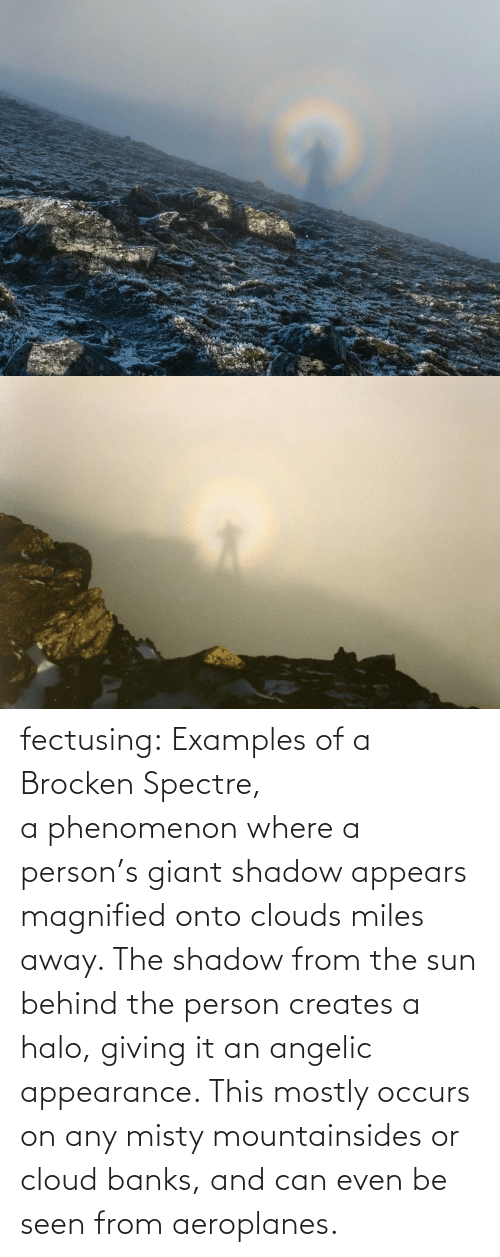 Angelic: fectusing: Examples of a Brocken Spectre, a phenomenon where a person's giant shadow appears magnified onto clouds miles away. The shadow from the sun behind the person creates a halo, giving it an angelic appearance. This mostly occurs on any misty mountainsides or cloud banks, and can even be seen from aeroplanes.