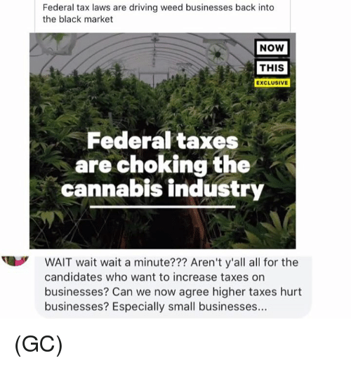 Driving, Memes, and Weed: Federal tax laws are driving weed businesses back into  the black market  NOW  THIS  EXCLUSIVE  Federal taxes  are choking the  cannabis industry  WAIT wait wait a minute??? Aren't y'all all for the  candidates who want to increase taxes on  businesses? Can we now agree higher taxes hurt  businesses? Especially small businesses... (GC)