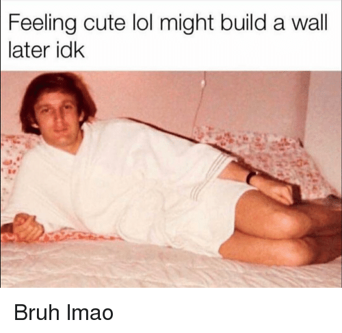 Bruh, Cute, and Funny: Feeling cute lol might build a wall  later idk Bruh lmao