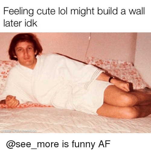 Build A Wall: Feeling cute lol might build a wall  later idk  made with mematic @see_more is funny AF