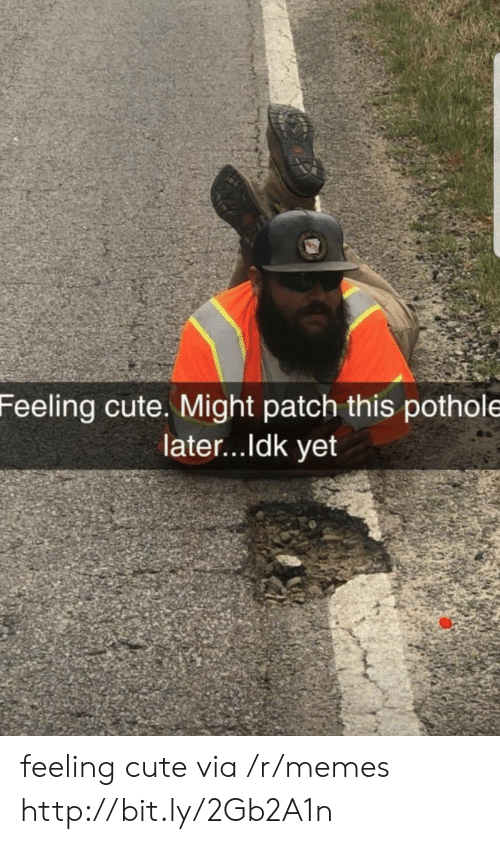 Cute, Memes, and Http: Feeling cute. Might patch this pothole  later...ldk yet feeling cute via /r/memes http://bit.ly/2Gb2A1n
