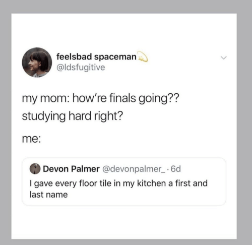 Finals, Mom, and Name: feelsbad spaceman  @ldsfugitive  my mom: how're finals going??  studying hard right?  me:  Devon Palmer @devonpalmer_ 6d  I gave every floor tile in my kitchen a first and  last name