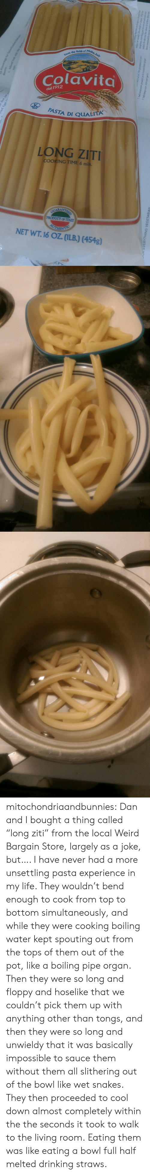 """unsettling: felds of Molse  flelds of  the  Colavita  dal 1912  PASTA DI QUALİA  LONG ZIT  COOKING TIME 6 mi  OF ITALY  NET WT. 16 OZ. (ILB) (454g)  o- mitochondriaandbunnies: Dan and I bought a thing called """"long ziti"""" from the local Weird Bargain Store, largely as a joke,  but…. I have never had a more unsettling pasta experience in my life. They wouldn't bend enough to cook from top to bottom simultaneously, and while they were cooking boiling water kept spouting out from the tops of them out of the pot, like a boiling pipe organ.  Then they were so long and floppy and hoselike that we couldn't pick them up with anything other than tongs, and then they were so long and unwieldy that it was basically impossible to sauce them without them all slithering out of the bowl like wet snakes. They then proceeded to cool down almost completely within the the seconds it took to walk to the living room.  Eating them was like eating a bowl full half melted drinking straws."""