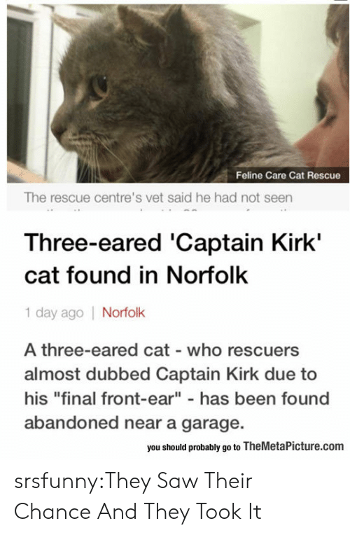 """dubbed: Feline Care Cat Rescue  The rescue centre's vet said he had not seen  Three-eared 'Captain Kirk'  cat found in Norfolk  1 day ago Norfolk  A three-eared cat who rescuers  almost dubbed Captain Kirk due to  his """"final front-ear"""" - has been found  abandoned near a garage.  you should probably go to TheMetaPicture.com srsfunny:They Saw Their Chance And They Took It"""
