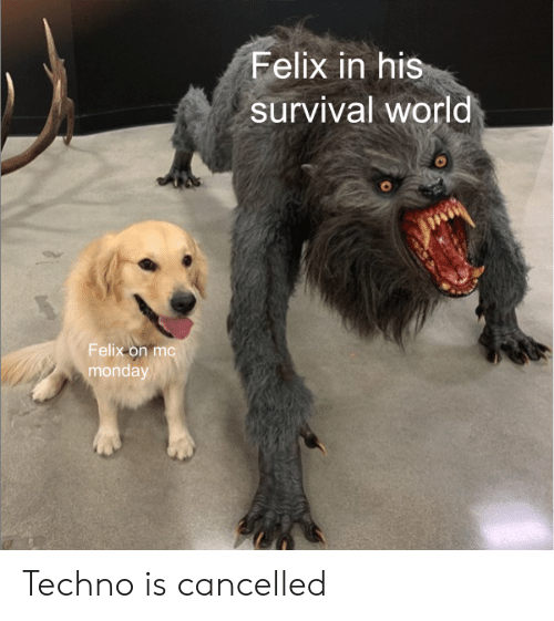 Felix in His Survival World Felix on Mc Monday Techno Is Cancelled