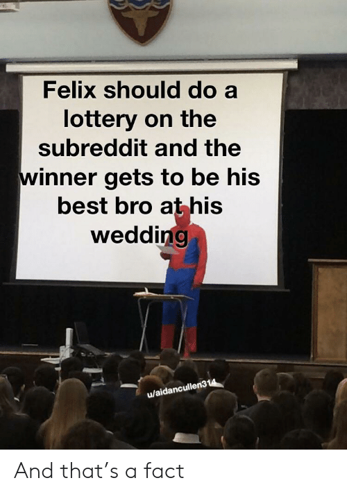 Lottery, Best, and Wedding: Felix should do a  lottery on the  subreddit and the  winner gets to be his  best bro athis  wedding  u/aidancullen314 And that's a fact