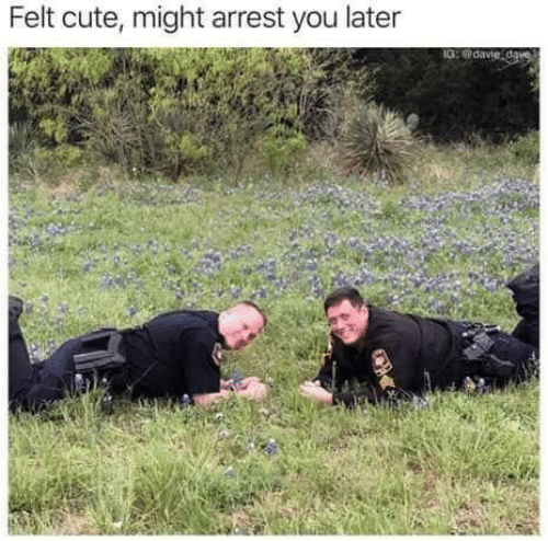 Cute, You, and Arrest: Felt cute, might arrest you later  G:odav