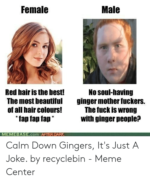 Red Hair Meme: Female  Male  No soul-having  ginger mother fuckers.  The fuck is wrong  with ginger people?  Red hair is the best!  The most beautiful  of all hair colours!  fap fap fap*  MEMEBASE.com AFTER Calm Down Gingers, It's Just A Joke. by recyclebin - Meme Center