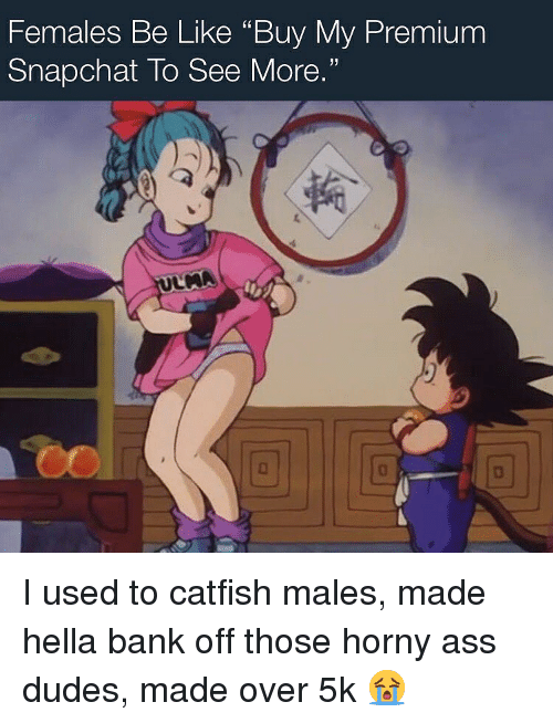 """Ass, Be Like, and Catfished: Females Be Like """"Buy My Premium  Snapchat To See More.""""  回  回 I used to catfish males, made hella bank off those horny ass dudes, made over 5k 😭"""