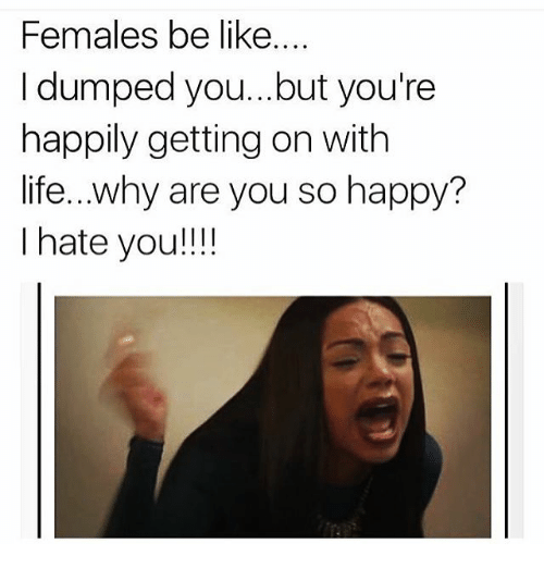 Why Are You So Happy: Females be like....  I dumped you...but you're  happily getting on with  life...why are you so happy?  I hate you!!!!