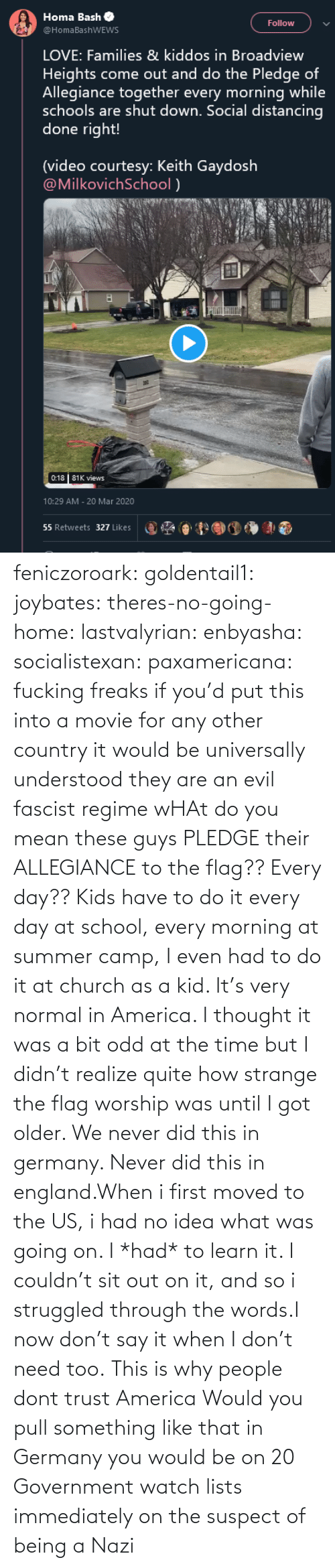 Older: feniczoroark:  goldentail1:  joybates:  theres-no-going-home:  lastvalyrian:  enbyasha:  socialistexan:  paxamericana: fucking freaks       if you'd put this into a movie for any other country it would be universally understood they are an evil fascist regime    wHAt do you mean these guys PLEDGE their ALLEGIANCE to the flag?? Every day??   Kids have to do it every day at school, every morning at summer camp, I even had to do it at church as a kid. It's very normal in America. I thought it was a bit odd at the time but I didn't realize quite how strange the flag worship was until I got older.    We never did this in germany. Never did this in england.When i first moved to the US, i had no idea what was going on. I *had* to learn it. I couldn't sit out on it, and so i struggled through the words.I now don't say it when I don't need too.   This is why people dont trust America    Would you pull something like that in Germany you would be on 20 Government watch lists immediately on the suspect of being a Nazi