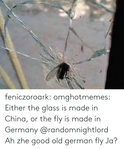german: feniczoroark:  omghotmemes:  Either the glass is made in China, or the fly is made in Germany   @randomnightlord    Ah zhe good old german fly Ja?