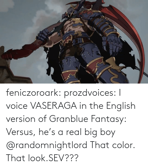 English Class: feniczoroark:  prozdvoices:  I voice VASERAGA in the English version of Granblue Fantasy: Versus, he's a real big boy     @randomnightlord    That color. That look.SEV???