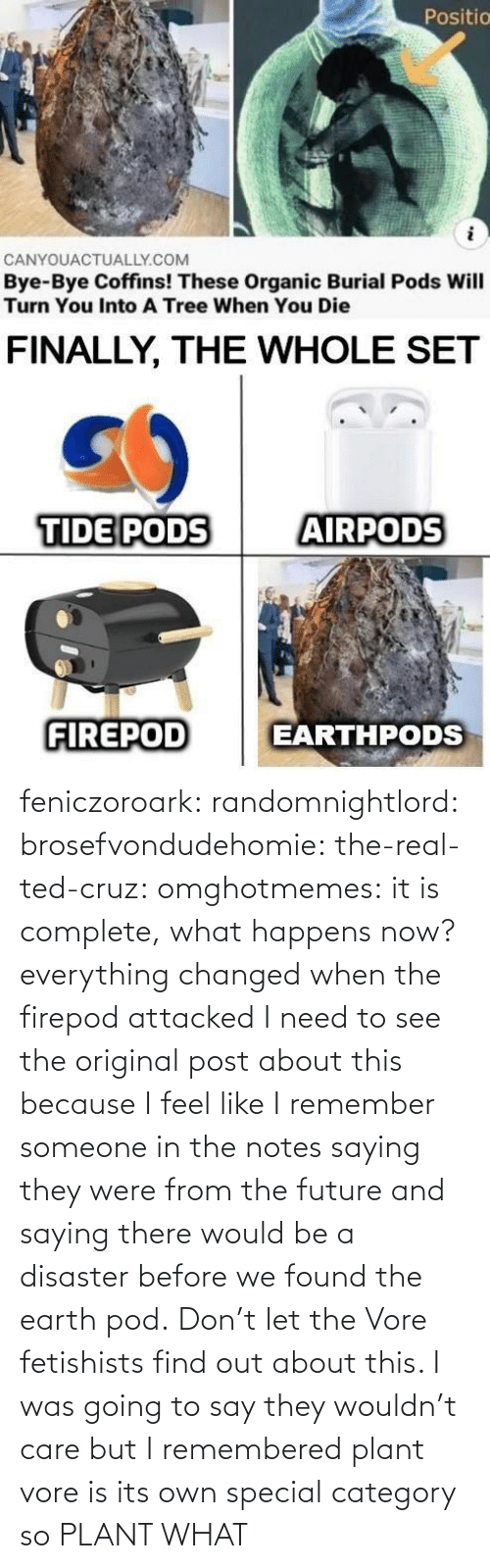 Because I: feniczoroark:  randomnightlord:  brosefvondudehomie: the-real-ted-cruz:  omghotmemes: it is complete, what happens now? everything changed when the firepod attacked    I need to see the original post about this because I feel like I remember someone in the notes saying they were from the future and saying there would be a disaster before we found the earth pod.    Don't let the Vore fetishists find out about this.    I was going to say they wouldn't care but I remembered plant vore is its own special category so   PLANT WHAT