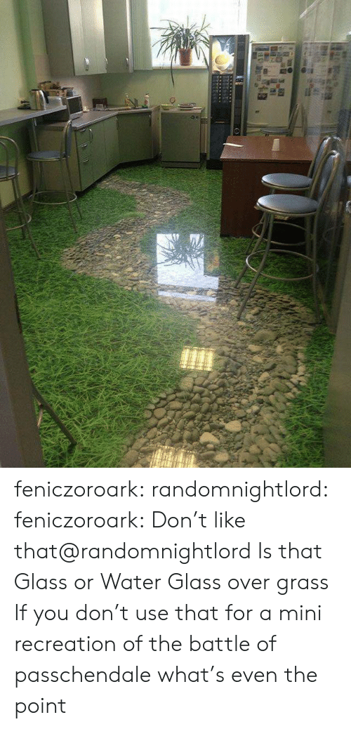Tumblr, Blog, and Water: feniczoroark:  randomnightlord:  feniczoroark:  Don't like that@randomnightlord   Is that Glass or Water  Glass over grass    If you don't use that for a mini recreation of the battle of passchendale what's even the point