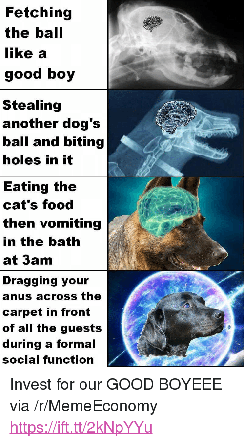 """Vomiting: Fetching  the ball  like a  good boy  Stealing  another dog's  ball and biting  holes in it  Eating the  cat's food  then vomiting  in the bath  at 3am  Dragging your  anus across the  carpet in front  of all the guests  during a formal  social function <p>Invest for our GOOD BOYEEE via /r/MemeEconomy <a href=""""https://ift.tt/2kNpYYu"""">https://ift.tt/2kNpYYu</a></p>"""