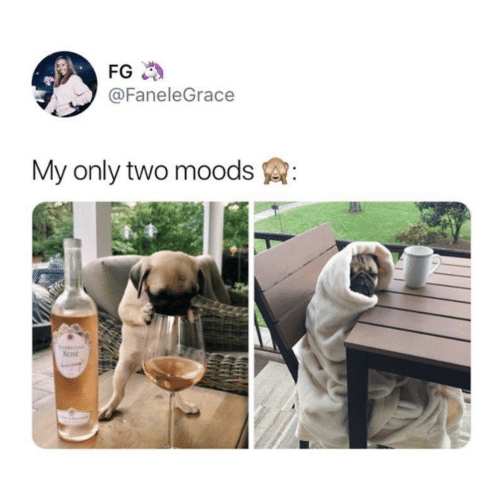 Moods: FG  @FaneleGrace  My only two moods  ROSE