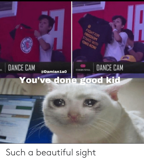cam: FIGHT FOR  FREEDOM  STAND WIT  ONG KON  ӨЕ  DANCE CAM  CEDARS SINAL  @Damian1a0  DANCE CAM  AL  You've done good kid Such a beautiful sight