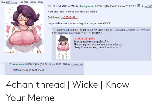 File 0222 Png 107 MB 1280x 1598 Thread #10 for Wicke Anonymous
