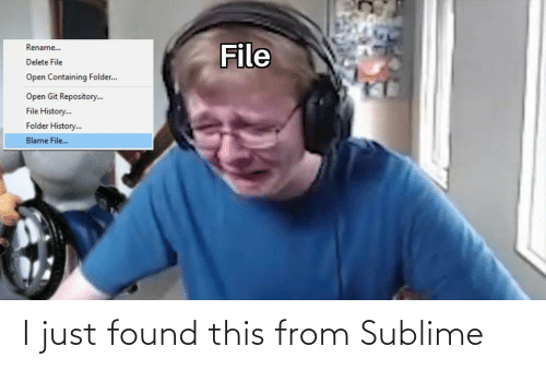 File: File  Rename..  Delete File  Open Containing Folder..  Open Git Repository.  File History.  Folder History..  Blame File.. I just found this from Sublime
