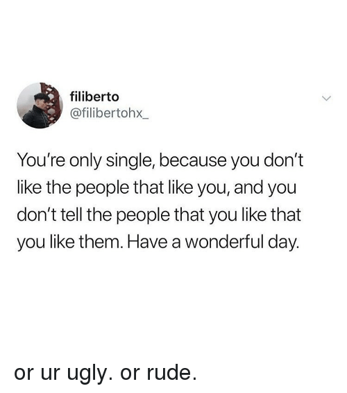 Memes, Rude, and Ugly: filiberto  @filibertohx  You're only single, because you don't  like the people that like you, and you  don't tell the people that you like that  you like them. Have a wonderful day. or ur ugly. or rude.