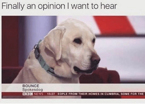 Finals, News, and Bbc News: Finally an opinion I want to hear  BOUNCE  Spokes dog  BBC  NEWS  15:27 EOPLE FROM THEIR HOMES IN CUMBRIA, SOME FOR THE