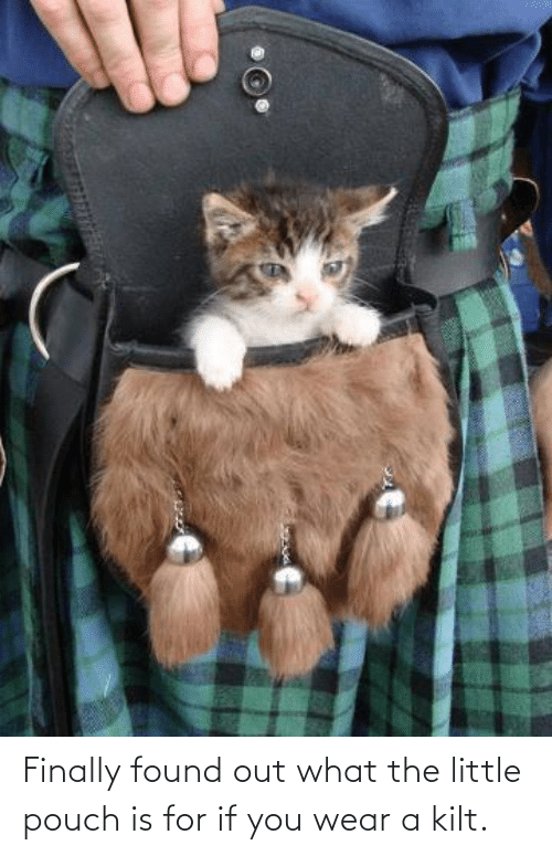 wear: Finally found out what the little pouch is for if you wear a kilt.