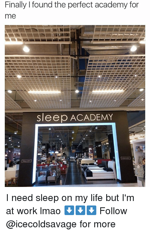I Need Sleep: Finally found the perfect academy for  me  Sleep ACADEMY I need sleep on my life but I'm at work lmao ⬇️⬇️⬇️ Follow @icecoldsavage for more