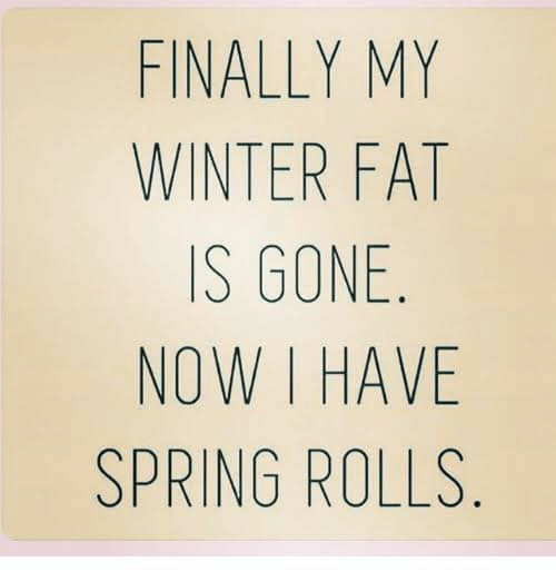 Memes, Winter, and Spring: FINALLY MY  WINTER FAT  IS GONE.  NOW I HAVE  SPRING ROLLS.