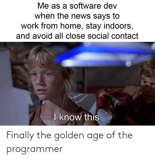 Golden: Finally the golden age of the programmer