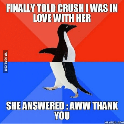 Thank You Meme: FINALLY TOLD CRUSHIWASIN  LOVE WITH HER  SHE ANSWERED AWW THANK  YOU  MEMEFUL COM