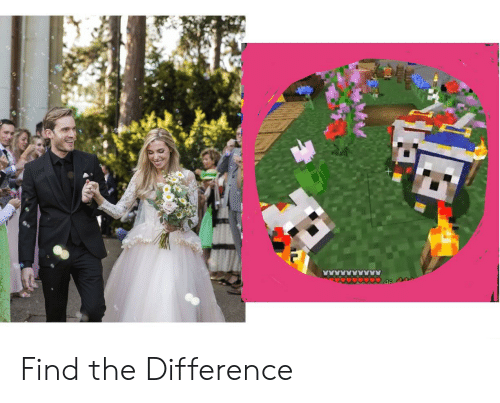 Find, The, and Difference: Find the Difference