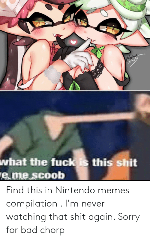 compilation: Find this in Nintendo memes compilation . I'm never watching that shit again. Sorry for bad chorp