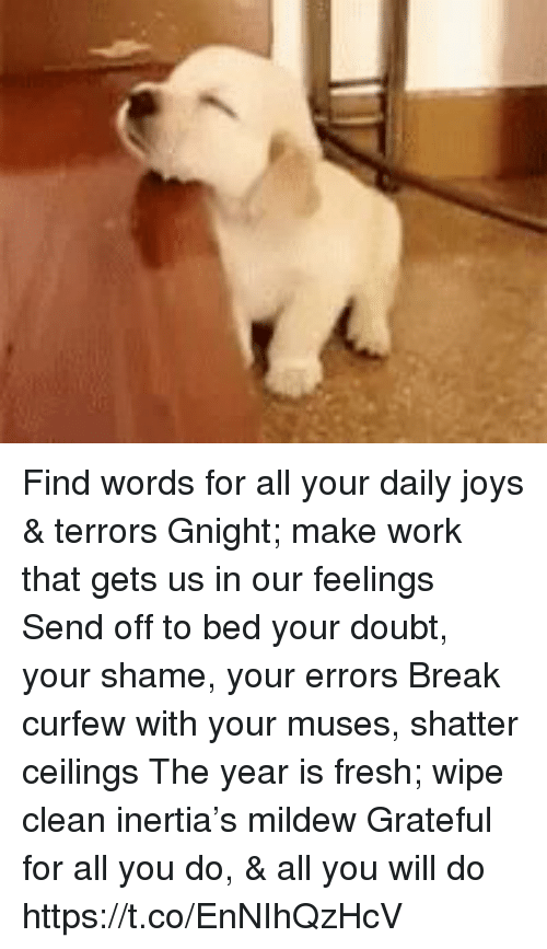 inertia: Find words for all your daily joys & terrors Gnight; make work that gets us in our feelings Send off to bed your doubt, your shame, your errors Break curfew with your muses, shatter ceilings The year is fresh; wipe clean inertia's mildew Grateful for all you do, & all you will do https://t.co/EnNIhQzHcV