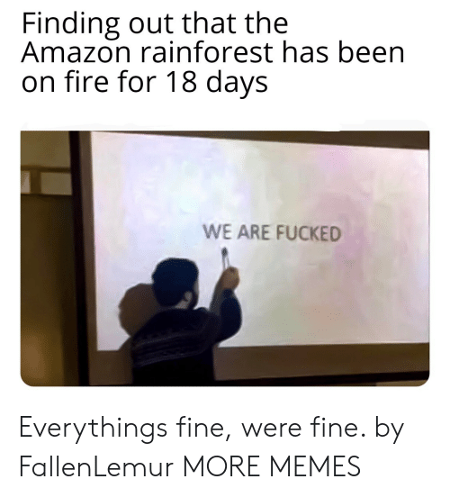 Amazon, Dank, and Fire: Finding out that the  Amazon rainforest has been  on fire for 18 days  WE ARE FUCKED Everythings fine, were fine. by FallenLemur MORE MEMES