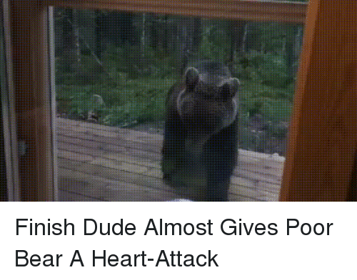 Dude, Bear, and Heart: Finish Dude Almost Gives Poor Bear A Heart-Attack