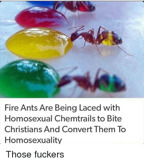 Convertable: Fire Ants Are Being Laced with  omosexual Chemtrails to  Bite  Christians And Convert Them To  Homosexuality Those fuckers