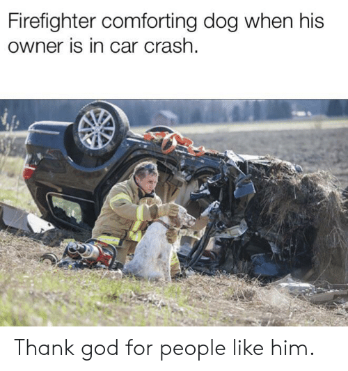 God, Firefighter, and Dog: Firefighter comforting dog when his  owner is in car crash Thank god for people like him.