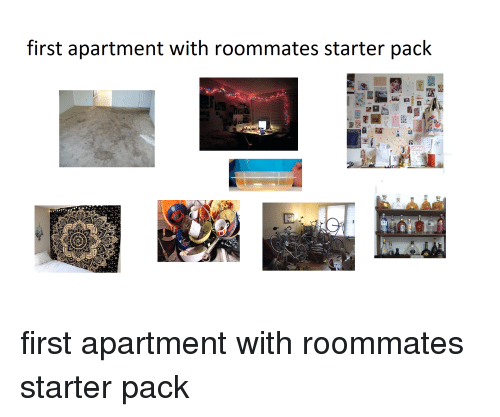 First Apartment With Roommates Starter
