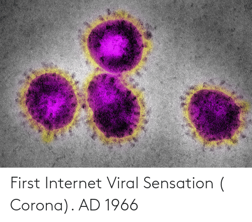 sensation: First Internet Viral Sensation ( Corona). AD 1966
