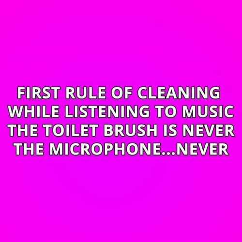 Memes, Music, and Never: FIRST RULE OF CLEANING  WHILE LISTENING TO MUSIC  THE TOILET BRUSH IS NEVER  THE MICROPHONE.NEVER