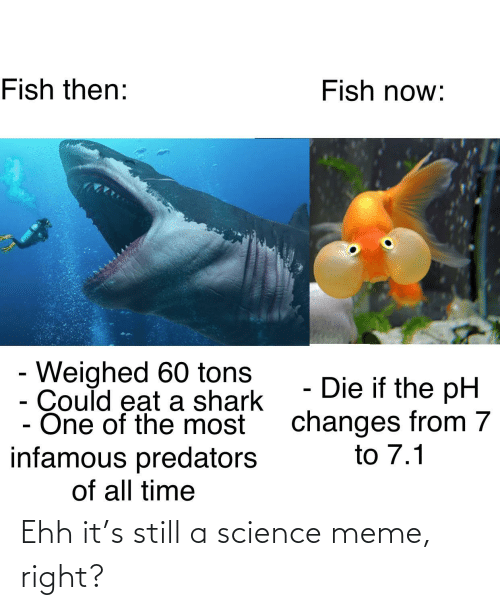 Science Meme: Fish now:  Fish then:  - Weighed 60 tons  Could eat a shark  - One of the most  infamous predators  of all time  - Die if the pH  changes from 7  to 7.1 Ehh it's still a science meme, right?