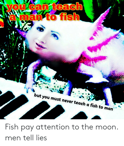 the moon: Fish pay attention to the moon. men tell lies