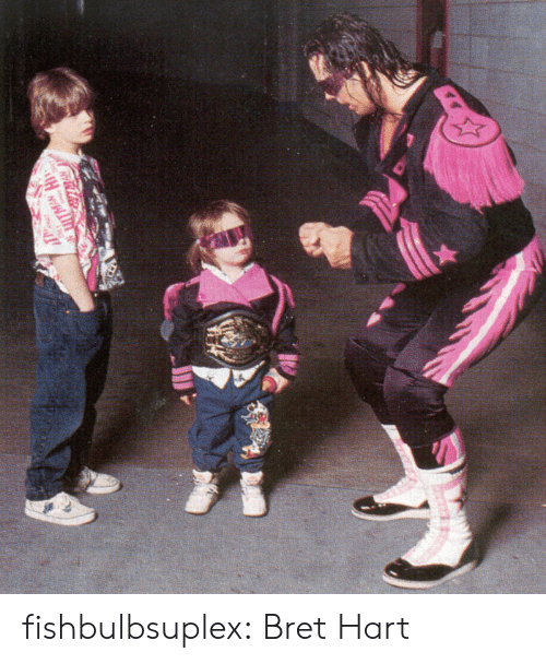 Bret Hart Memes Best Collection Of Funny Bret Hart Pictures
