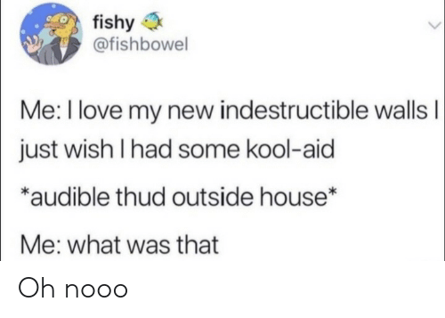 Kool Aid: fishy  @fishbowel  Me: I love my new indestructible wallsI  just wish I had some kool-aid  *audible thud outside house*  Me: what was that Oh nooo