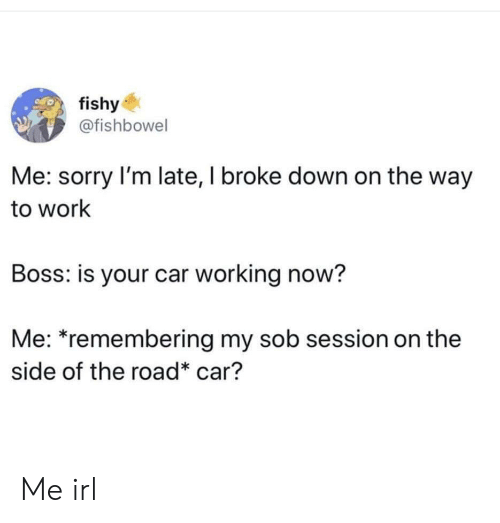 Sorry, Work, and The Road: fishy  @fishbowel  Me: sorry I'm late, I broke down on the way  to work  Boss: is your car working now?  Me: *remembering my sob session on the  side of the road* car? Me irl