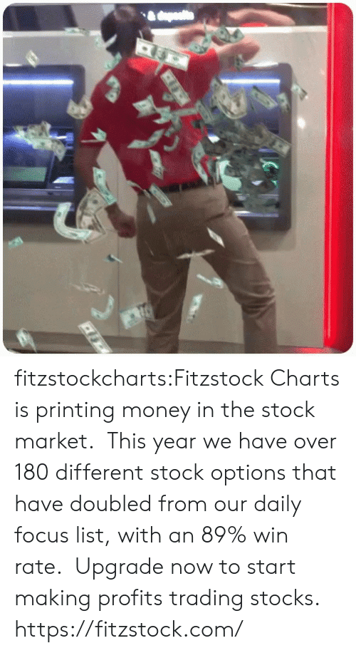 market: fitzstockcharts:Fitzstock Charts is printing money in the stock market.  This year we have over 180 different stock options that have doubled from our daily focus list, with an 89% win rate.  Upgrade now to start making profits trading stocks.  https://fitzstock.com/