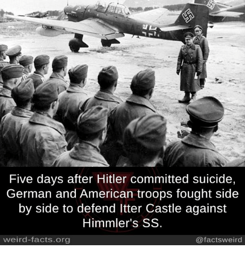 germane: Five days after Hitler committed suicide,  German and American troops fought side  by side to defend ltter Castle against  Himmler's SS  weird-facts.org  @factsweird