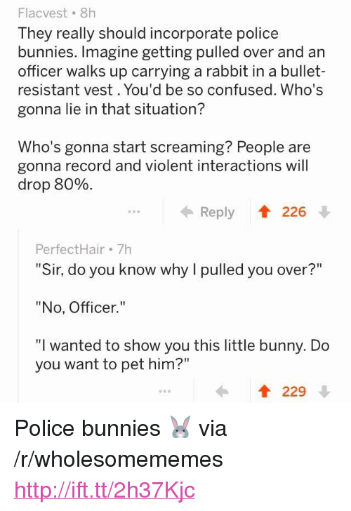 """Bunnies, Confused, and Police: Flacvest 8h  They really should incorporate police  bunnies. Imagine getting pulled over and an  officer walks up carrying a rabbit in a bullet-  resistant vest. You'd be so confused. Who's  gonna lie in that situation?  Who's gonna start screaming? People are  gonna record and violent interactions will  drop 80%  Reply  226  PerfectHair 7h  """"Sir, do you know why I pulled you over?""""  """"No, Officer.""""  """"I wanted to show you this little bunny. Do  you want to pet him?""""  229 <p>Police bunnies 🐰 via /r/wholesomememes <a href=""""http://ift.tt/2h37Kjc"""">http://ift.tt/2h37Kjc</a></p>"""