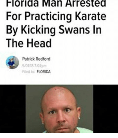karate: Florida Man Arrested  For Practicing Karate  By Kicking Swans In  The Head  Patrick Redford  5/0118 7:02pm  Fed to: FLORIDA